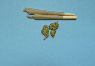 Législation de la marijuana, où en est l'Italie ?